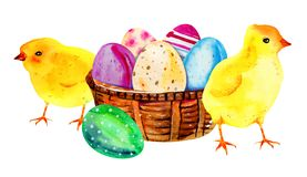 Painted Easter eggs in a wooden basket. Hand drawn watercolor il royalty free illustration