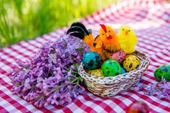 Painted Easter quail eggs with chicken on a background of green grass Stock Photography
