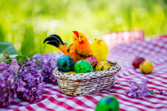 Painted Easter quail eggs with chicken on a background of green grass Stock Photo