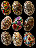 Painted easter romanian eggs isolated Royalty Free Stock Image