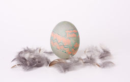 Painted egg with feathers Royalty Free Stock Image