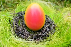 Painted egg in a nest - Easter Royalty Free Stock Image