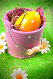 Painted Eggs royalty free stock image
