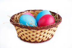 Painted eggs in basket isolated on white background. Royalty Free Stock Images