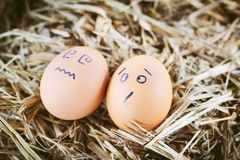 Painted  eggs about emotion on the face Stock Photography