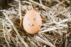 Painted  eggs about emotion on the face Royalty Free Stock Photos