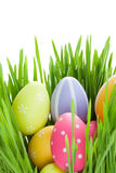 Painted eggs in green grass Royalty Free Stock Photo