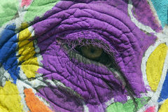 Painted Elephant Eye Royalty Free Stock Photo