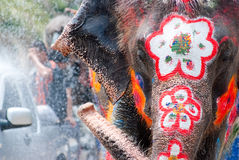 Painted elephant in Songkran Festival Stock Images