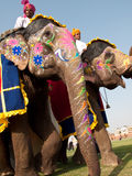 Painted Elephants on Parade Royalty Free Stock Photos