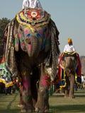 Painted Elephants on Parade Stock Photo
