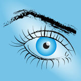Painted Eye with blue pupil on a blue background.Vector Royalty Free Stock Photography