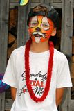Painted face. A boy painted for a party royalty free stock images