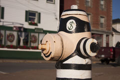 Painted Fire Hydrant Royalty Free Stock Images