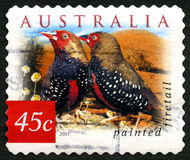 Painted Firetail Australian Postage Stamp Royalty Free Stock Images