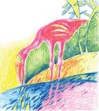 Painted flamingo bird - vector illustration Royalty Free Stock Photography