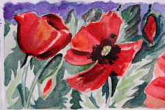 Painted floral watercolor Royalty Free Stock Image