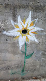 Painted flower on concrete wall Stock Images