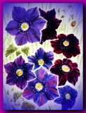 Painted flowers royalty free stock photography