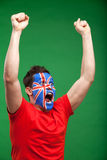 Painted football fan. Man rooting for his team, raising his hands up Royalty Free Stock Images