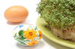 Painted and fresh Easter egg with green watercress. White background Royalty Free Stock Photos