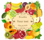 Painted fruit collection with place for an inscription. Vector illustration. Royalty Free Stock Image