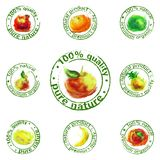Painted fruit icon vector Royalty Free Stock Photography