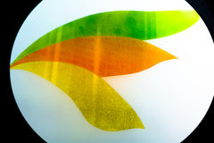 Painted glass. Handmade work ideal for abstract backgrounds. Royalty Free Stock Images