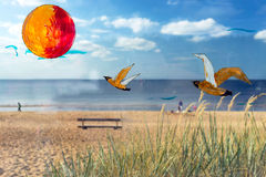 Painted on the glass and the sun strange gulls on beach backgrou Stock Photos