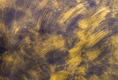 Painted Gold on metal texture for background Royalty Free Stock Images