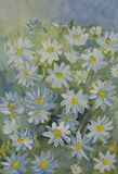 Painted with gouache paint Daisy flowers in white and blue tones Stock Image