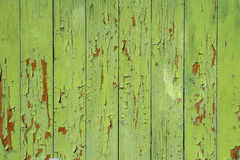 Painted green background Royalty Free Stock Images