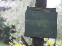 Painted green sign or board in wood Royalty Free Stock Image