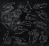Painted hands chalk. Painted hands drinks in vintage style stylized drawing with chalk on blackboard Stock Photography