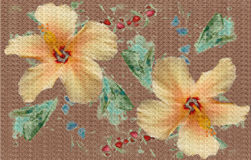 Painted Hibiscus Flowers royalty free stock photos