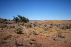 Painted Hills Desert Stock Photography