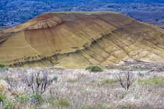 Painted Hills desert area. Royalty Free Stock Photography