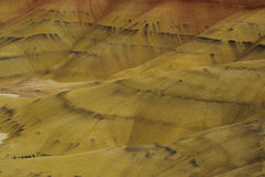 Painted hills in Oregon Royalty Free Stock Image