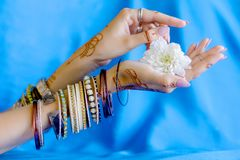 Painted Indian hand with mehndi ornament. Slender elegant female wrists painted with traditional Indian oriental mehndi ornaments by henna. Hands dressed in royalty free stock photography