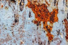 Painted iron surface with a large rusty spot and metal corrosion. Painted iron blue surface with a large rusty spot and metal corrosion. Background, texture stock image