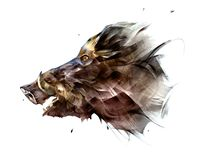 Painted isolated bright face animal boar from the side stock image