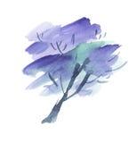 Painted Jacaranda tree blossom. Stock Image