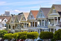 The painted ladies Stock Photography