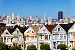 Painted ladies Stock Images