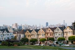 Painted Ladies Royalty Free Stock Photos