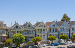 Painted Ladies Stock Photos