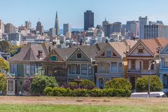 Painted Ladies in front of San Francisco Skyline royalty free stock image