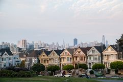 Painted Ladies Royalty Free Stock Photo
