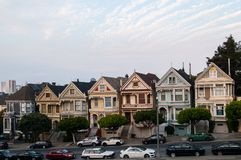 Painted Ladies Royalty Free Stock Photography