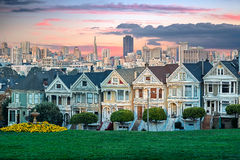 Painted Ladies of San Francisco. San Francisco cityscape with the Painted Ladies as seen from Alamo square park Royalty Free Stock Photos